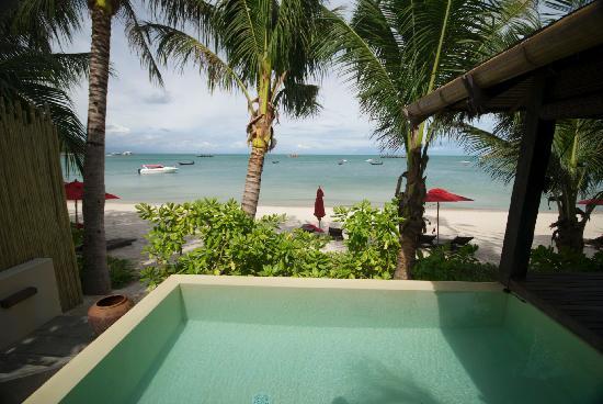 อนันตรา รสานันดา เกาะพะงัน วิลล่า รีสอร์ท แอนด์ สปา: Pool