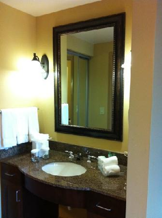 Homewood Suites by Hilton Davidson: Sink