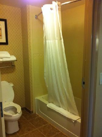 Homewood Suites by Hilton Davidson: Shower & Toilet Area