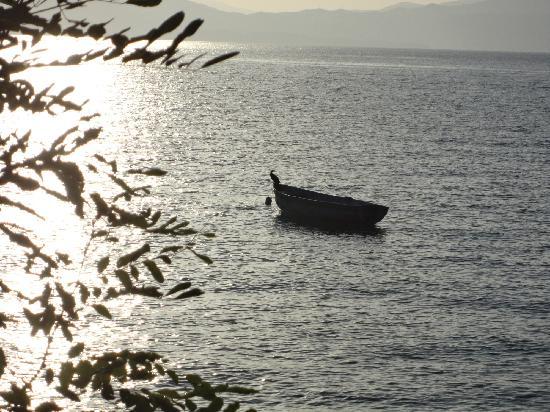 Ohrid, สาธารณรัฐมาซิโดเนีย: Pestani