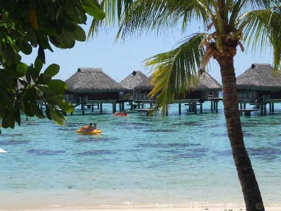 Hilton Moorea Lagoon Resort & Spa: A view from the beach.