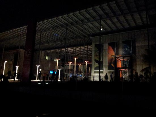 California Academy of Sciences: The Academy at Night