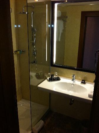 Hotel Bristol Sarajevo: Bathroom