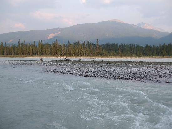 Pine Bungalows: View of Athabasca River from outside our cabin