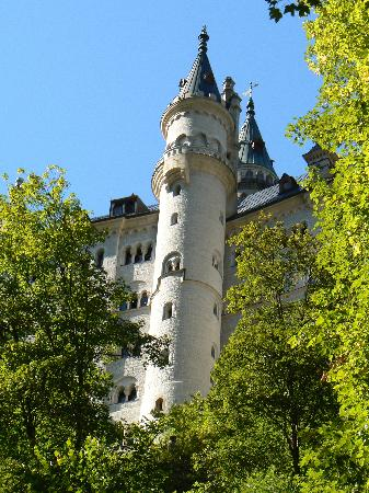 Mike's Bike Tours: View of Castle from the Trail