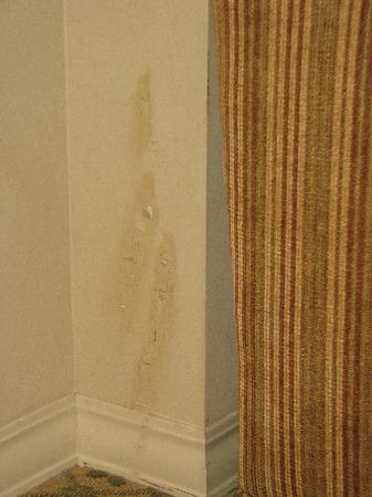 Hyatt Regency Hill Country Resort and Spa: old wallpapers falling off