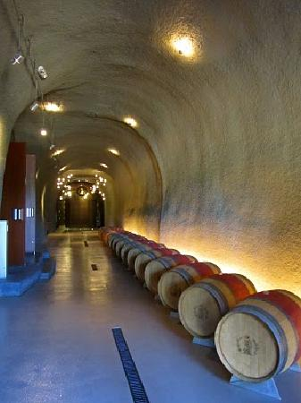 Intimate Wine Tours: Depth of the cave entrance at Lancaster Estate Winery in the Alexander Valley.