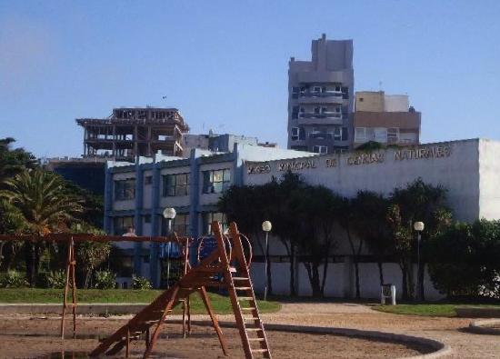 Lorenzo Scaglia Municipal Museum of Natural Sciences: 1- Museo Lorenzo Scaglia -Mar del Plata