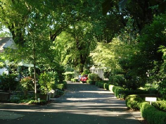 Cottage Grove Inn: The entrance
