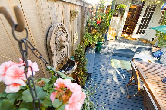 Auld Dublin Guest House: garden 3