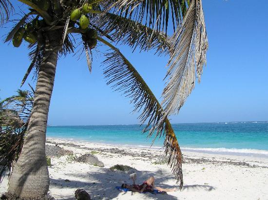 Pesca Maya Fishing Lodge: Pesca Maya Beach
