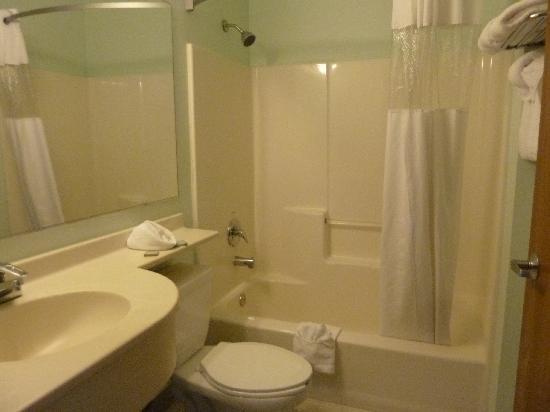 Auburn Travelodge Inn and Suites: bathroom