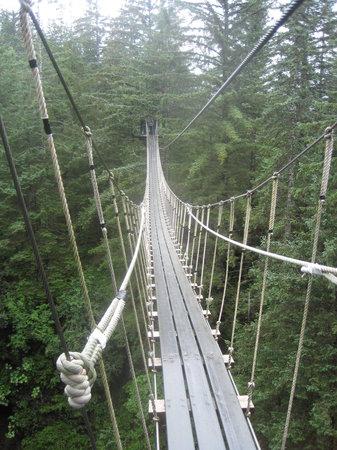 Alaska Canopy Adventures: Cable bridge