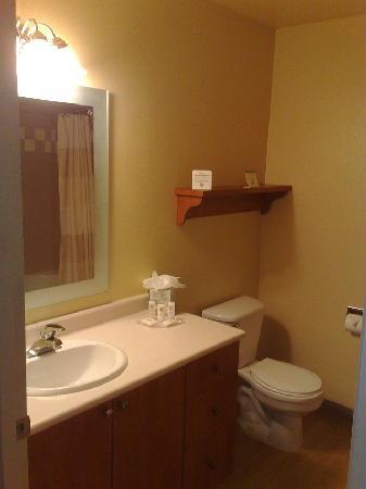 TownePlace Suites Portland Hillsboro: bathroom