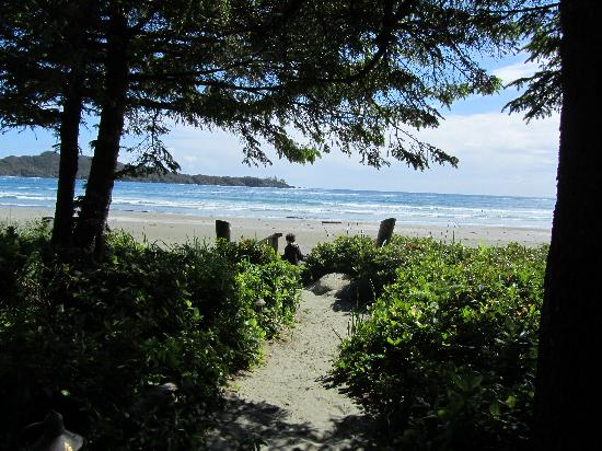 Chesterman Beach Bed and Breakfast: path to the beach