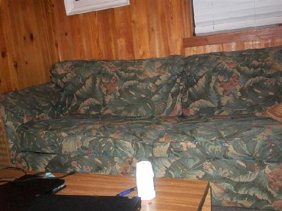 Old Saltworks Cabins: nasty couch