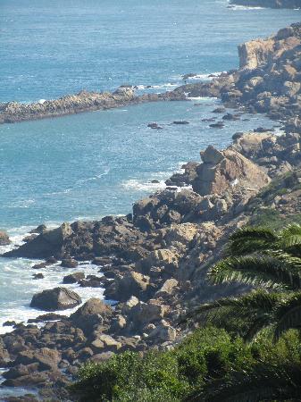 Said Private Day Tours: Coast line..plesent suprise