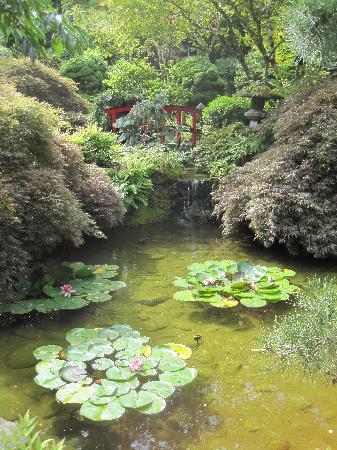 The Butchart Gardens: Gardens