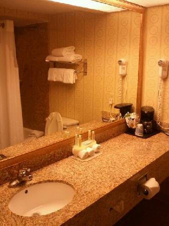 Comfort Inn Clarksville: Bathroom