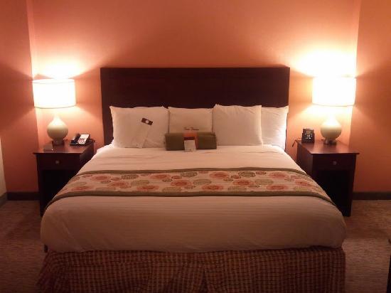 DoubleTree Suites by Hilton Hotel Atlanta - Galleria: King Bed