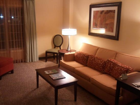 DoubleTree Suites by Hilton Hotel Atlanta - Galleria: Living Room