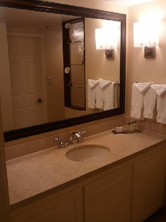 DoubleTree Suites by Hilton Hotel Atlanta - Galleria: Bathroom