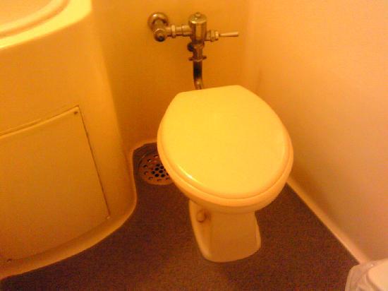 โรงแรมคารินะ: トイレ,今時珍しくシンプルなトイレ
