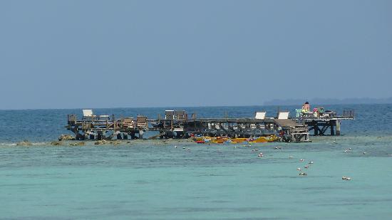 Kura Kura Resort: kura kura pontile