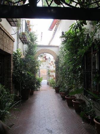 El Caballo Rojo: Restaurant Courtyard -- a nice retreat from heat and crowds