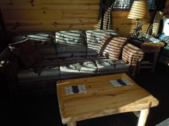 Frontier Cabins Motel: Pull out couch