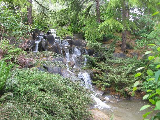 VanDusen Botanical Garden: Waterfall