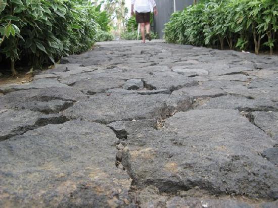 ดับบลิวรีทรีทแอนด์สปา บาหลี-เซมินยัค: Villa Path