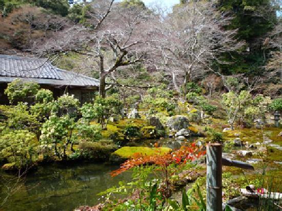 อิวาคุระ จิซโซอิน: 庭園
