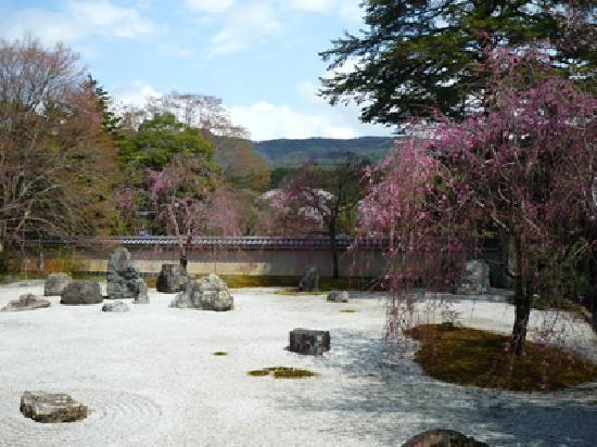 อิวาคุระ จิซโซอิน: 石庭