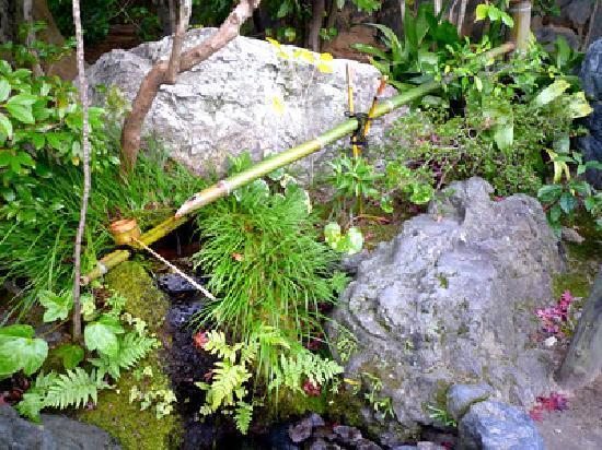สวนไทโซอิน: 水琴窟