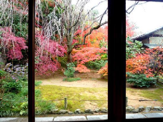 สวนไทโซอิน: お茶室から見える庭園