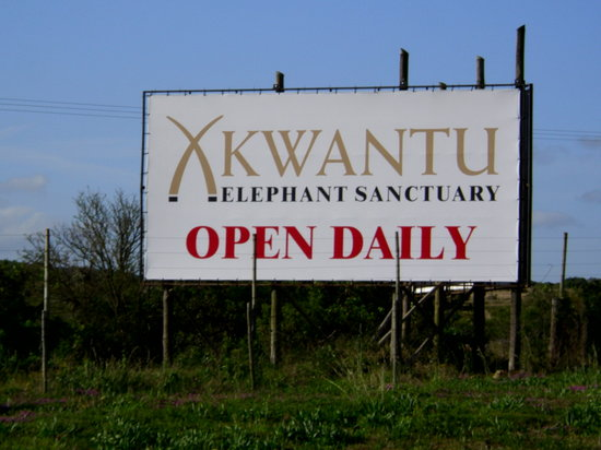 Port Elizabeth, South Africa: Kwantu Elephant Sanctuary N2