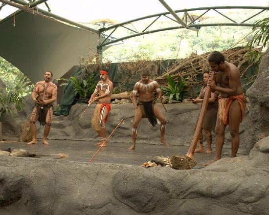 Tjapukai Aboriginal Cultural Park: Dance Theatre 4