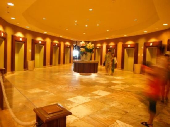 Sheraton Waikiki: Elevator fun