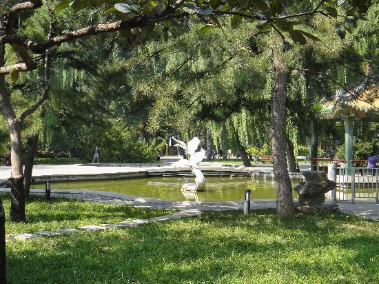 Ritan Park (Ritan Gongyuan): fishing pond