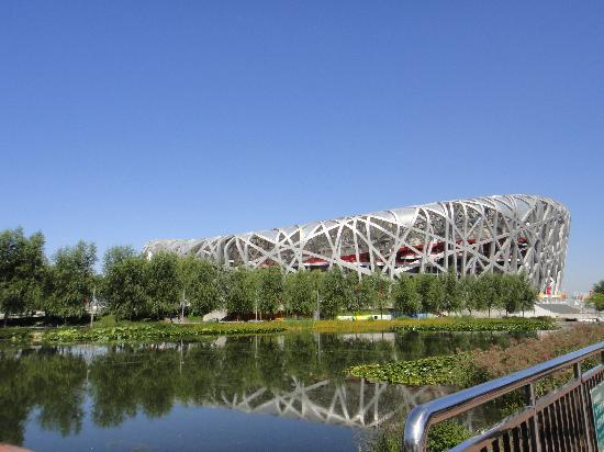 Olympic Park: Bird's Nest