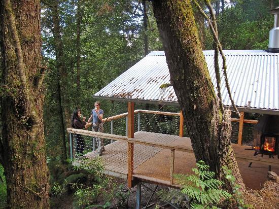 Tarkine Trails - Tarkine Rainforest Retreat: Tarkine Longhouse at the Tarkine Rainforest Retreat