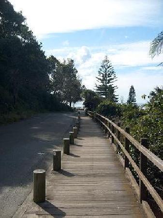 บีชพอร์ต เบด แอนด์ เบรคฟาสท์: Beautiful rain forest and coastal walks
