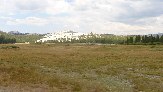 Tuolumne Meadows with dome structure