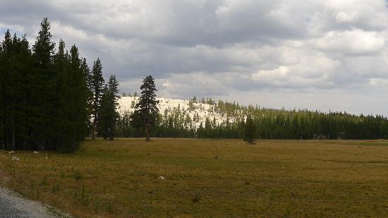 Tuolumne Meadows(2)