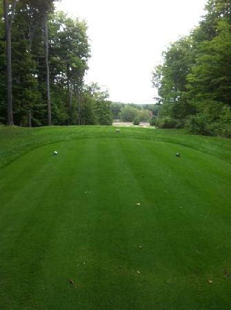 Lake Ann, MI: White course