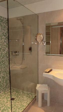 โรงแรมคอคคารอยัลไทยสปา: Bathroom, Standard Room