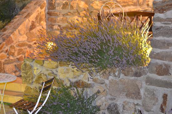 Le Hameau de la Mûre: la nuit au hameau