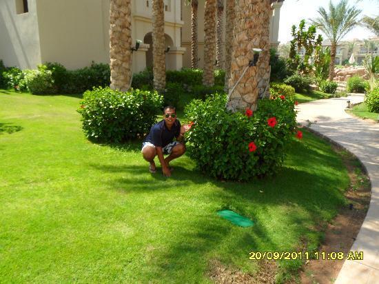 Rixos Sharm El Sheikh: Garden