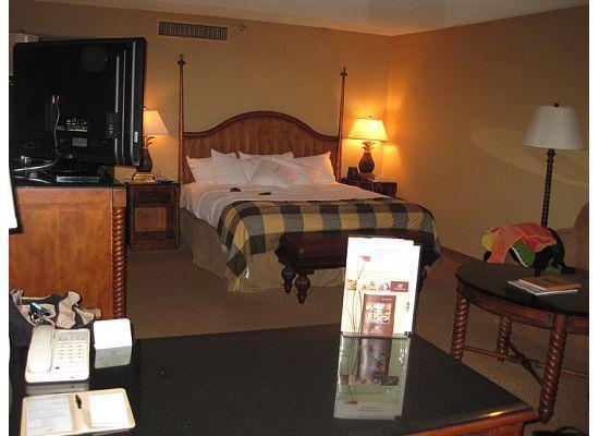Hilton Santa Barbara Beachfront Resort: Room